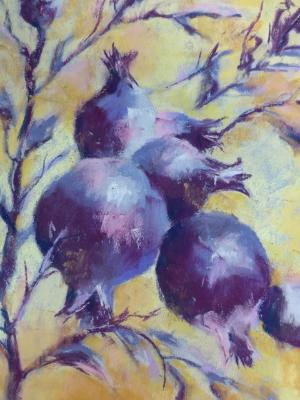 Pomegranate 2  9x12