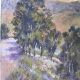 San Pasqual Valley  12x18