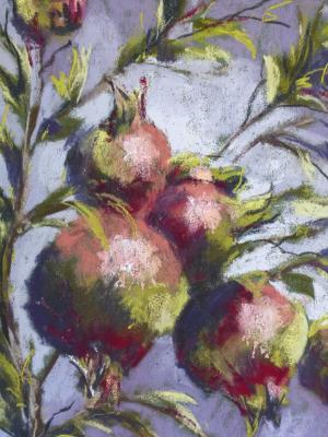 Pomegranate 1  9x12