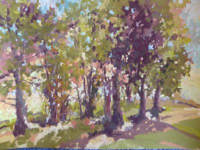 Kit Carson plein air 16x12