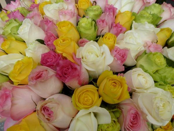Roses at market in Paris
