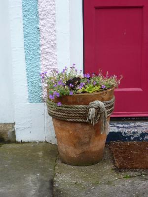 Pink Door Gardentown Scotland
