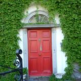 Ivy with red door Ireland