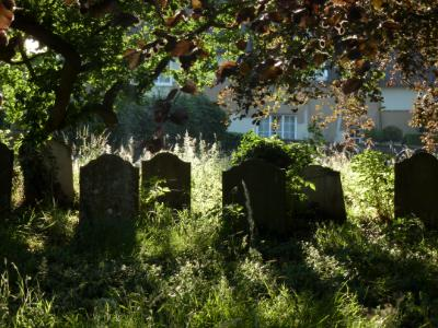 Morning light on tombstones