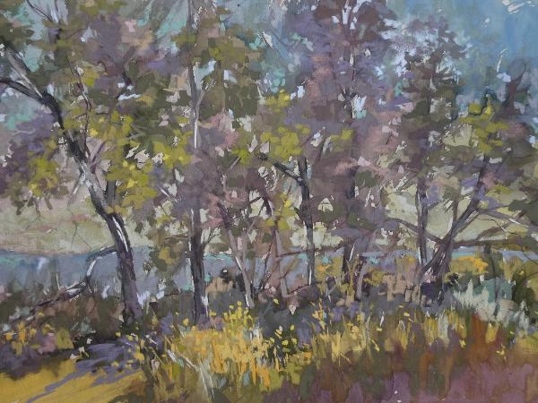 Lake Wohlford Trees