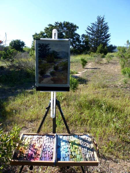 My first plein air pastel painting