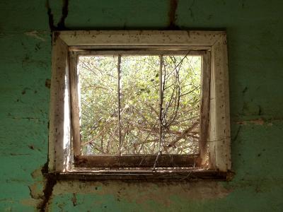 Old window Australia
