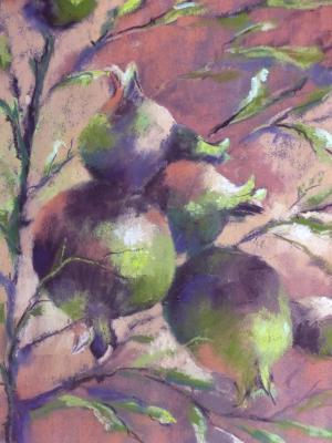 Pomegrante 3
