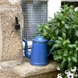 Blue pot on window France
