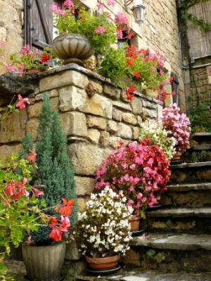 Pots on Steps France