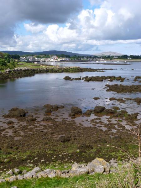 Landscape Ireland