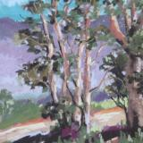 San Pasqual Valley 9x12