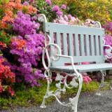 Garden Bench Prague