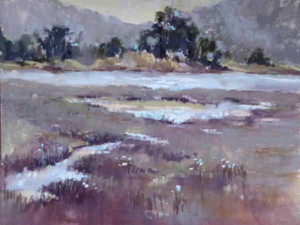 Batiquitos Lagoon 12x9