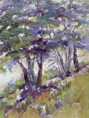 Trees on the Hillside 16x12