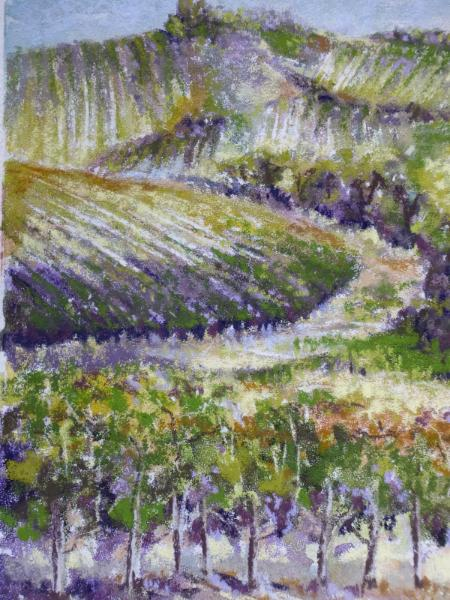 Local Vineyard 9x12