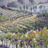Vineyard Vista plein air 9x12