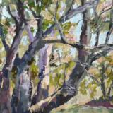 Local Plein Air Paintings