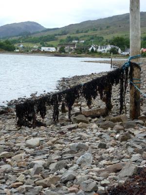 Lochcarron Scotland