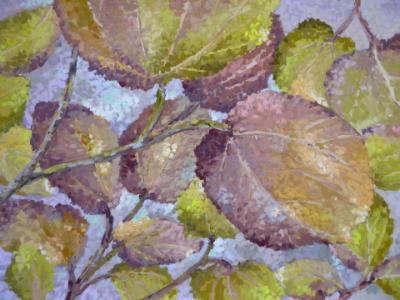 A Bunch of Leaves 12x16