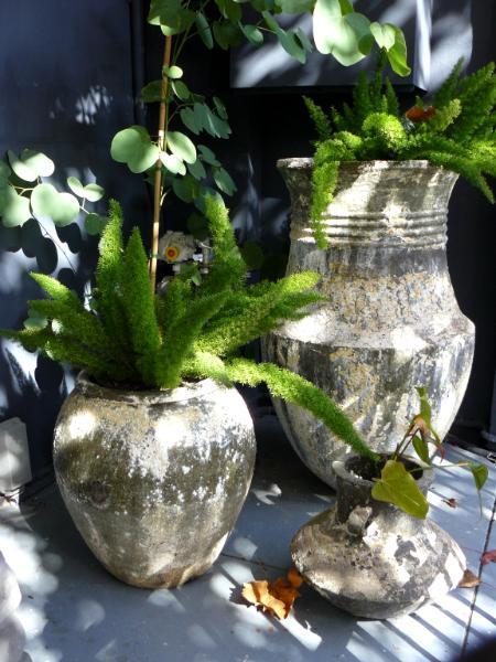 Pots on porch Sydney Australia