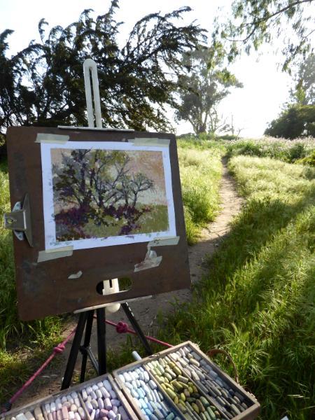 My pastel plein air paintings